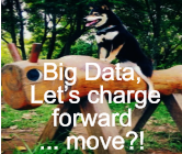 Big Data,  Let's charge forward  ... move?!